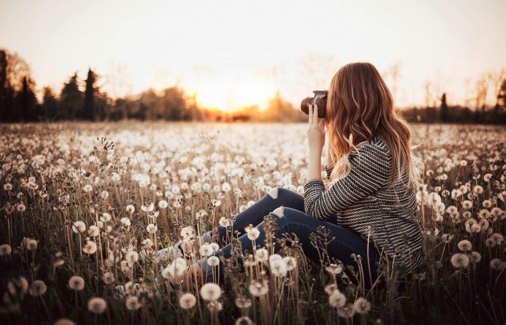 Sunny Daydream